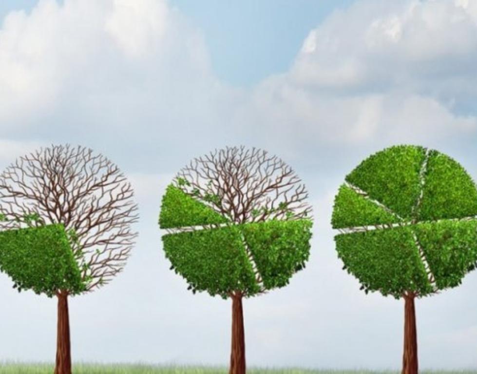 Gradualismo. ¿Existe el liderazgo paso a paso? |Carlos A. Sosa|